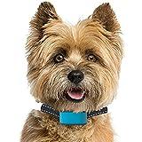 PetSol, intelligentes, fortschrittliches, wiederaufladbares Anti-Bell-Halsband, stoppt das Bellen des Hundes zuverlässig, sicher und human