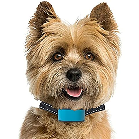 PetSol Rechargeable Advanced Anti Bark Intelligent Dog Stop Barking Collar Reliably Stops Dogs Barking Safely And Humanely