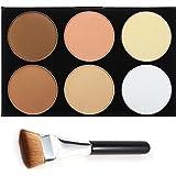 DE'LANCI Professional 6 Warme Farben-kosmetische Foundation Concealer Tarnung Contour-Verfassungs-Paletten Set Gesichtskonturierung Kit mit Make-up Pinsel (6 Farben)