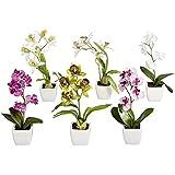 Orchidea baby finta, con vaso in ceramica colore: bianco, rosa, viola, verde, 6 pezzi