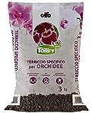 CIFO Linea Torfy, Terriccio specifico per Orchidee 3lt, concimazione bilanciata, con corteccia, con perlite e fibra di cocco