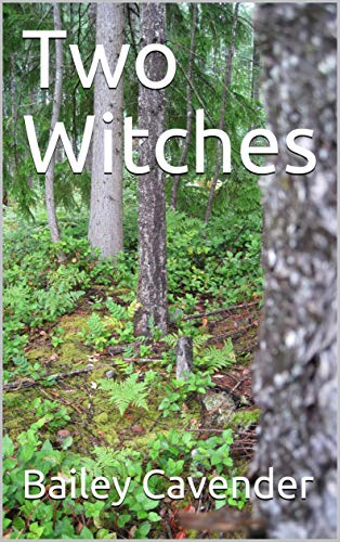 Two Witches (Chronicles of Gaia Book 1) (English Edition)