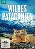 Wildes Patagonien