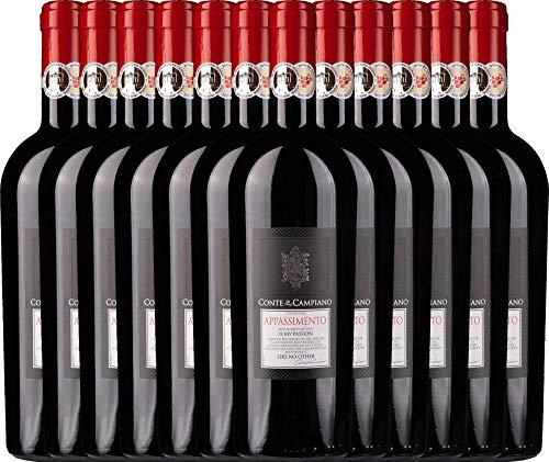 VINELLO 12er Weinpaket Rotwein - Appassimento 2015 - Conte di Campiano mit Weinausgießer | halbtrockener Rotwein | italienischer Wein aus Apulien | 12 x 0,75 Liter