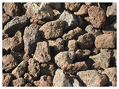 Der Naturstein Garten 15 kg Grill Lava Steine 32-56 mm - Gasgrill Elektrogrill Lavastein Lavasteine Kies Kiesel Aquarium - Lieferung KOSTENLOS