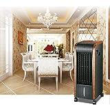 Climatizador Acondicionador Frio y Calor Multifunción digital 5 EN 1