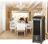 Climatizzatore di aria calda/fredda, multifunzione, digitale, 5in 1