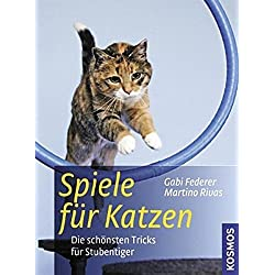 Spiele für Katzen: Die schönsten Tricks für Stubentiger