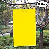 20 Paquets autocollants double-face jaunes pour insectes volants,PVC,avec Attaches de Câble Feuilles Jaunes Pièges Anti Blanc de Mouches, Pucerons, Mites pour Jardin Plante Fleur Fruits(15 x 20cm)