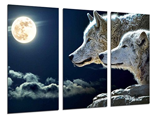 Cuadro Fotográfico Lobos Luna Llena Tamaño total: