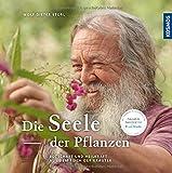 Die Seele der Pflanzen: Botschaften und Heilkräfte aus dem Reich der Kräuter - Wolf-Dieter Storl