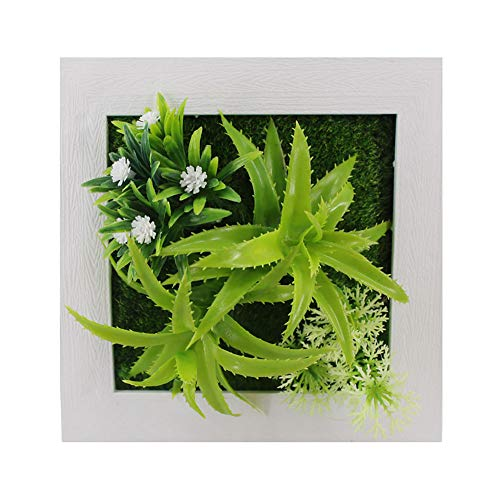 QWooQW Frame Wall Kunstblumen, Verschiedene Arten Von GrüNpflanzen, WandbehäNge, Indoor-Wandbehang Dekorationen