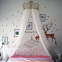 GE&YOBBY Princess Bed Canopy,white Lace Chiffon Bed Curtain Decorative Drapery Metal Crown With Stars Lights For Girls Bedroom-white 1.8m
