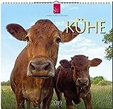MF-Kalender KÜHE 2019