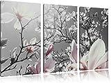 schöne Magnolie Blüten schwarz/weiß auf 3-Teiler Leinwandbild 120x80 Bild auf Leinwand, XXL riesige Bilder fertig gerahmt mit Keilrahmen, Kunstdruck auf Wandbild mit Rahmen, gänstiger als Gemälde oder Ölbild, kein Poster oder Plakat
