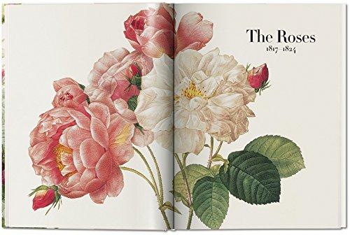 Zoom IMG-3 il libro dei fiori lingua