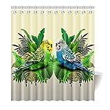 Violetpos Duschvorhang Vögel Papagei 2 Hochwertige Qualität Badezimmer 180 x 200 cm
