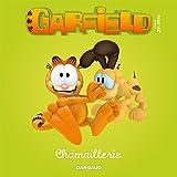 Garfield & Cie - Livre pour enfants - tome 1 ...