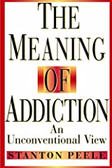 Meaning Addiction Unconventional 98 P: An Unconventional View Paperback
