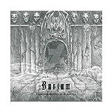 Burzum From the Depths of Darkness (Vinyl Double Album) (Schallplatte) Doppel-LP