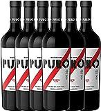 6er Paket - Puro Corte 2017 - Dieter Meier | trockener Rotwein | argentinischer Biowein aus Mendoza | 6 x 0,75 Liter