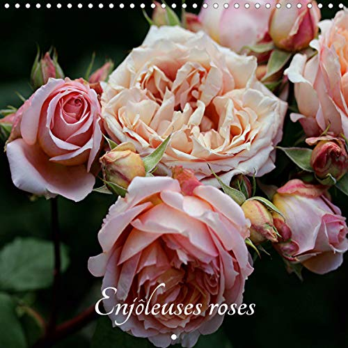 300 Art Nouveau Designs (Enjôleuses roses (Calendrier mural 2020 300 × 300 mm Square): Calendrier de photos de roses inédites (Calendrier mensuel, 14 Pages ) (Calvendo Places))