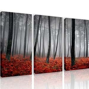 S11 nature 3 quadri moderni 120x80 cm stampa digitale su tela ideale per arredo cucina - Quadri moderni per cucina ...