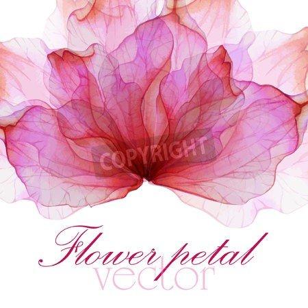 """Poster-Bild 30 x 30 cm: """"Watercolor floral round patterns"""", Bild auf Poster"""