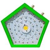 La série de Noël a mené élèvent des lumières 1000W LED élèvent le spectre complet léger pour les plantes d'intérieur Veg et la fleur [Classe énergétique A +++]