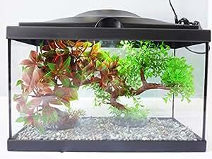 Fish Around Piccolo starter con completo, acquario L.E.D Lighting & filtro