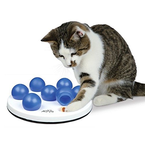 katzeninfo24.de Trixie Cat Activity Solitär-1PACK