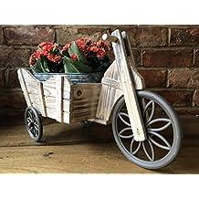 Vintage rústico bicicleta ciclo triciclo hogar jardín maceta planta maceta soporte