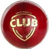 #9: Club Cricket Leather Ball 4 pcs