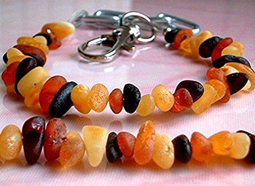 Bernstein Halsband für Hunde und Katzen - mit verstellbarem Gürtel - Länge von 20 cm bis 26 cm - Bernsteinkette-Zeckenhalsband-Zeckenschutz