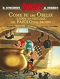 Image de Asterix: Come fu che Obelix cadde da piccolo nel p
