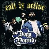 Songtexte von Tha Dogg Pound - Cali Iz Active
