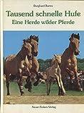 Tausend schnelle Hufe : eine Herde wilder Pferde.