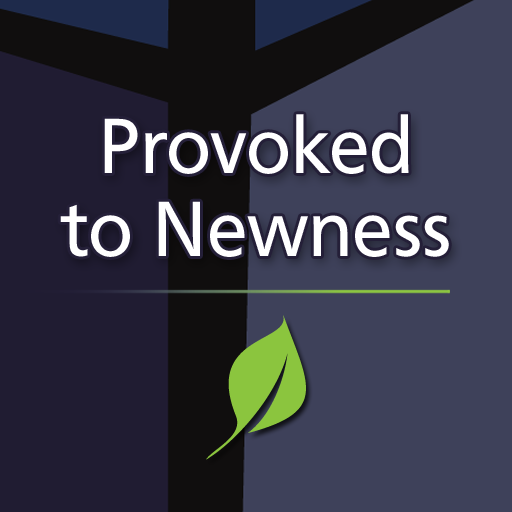 provoked-to-newness