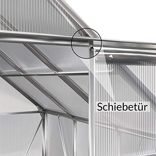Deuba Aluminium Gewächshaus - 9