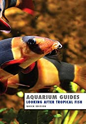 Aquarium Guide: Looking After Tropical Fish