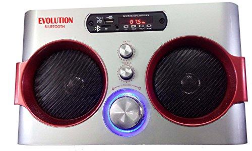 Evolution Kart Bluetooth USB FM Aux Multimedia Player,Silver