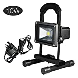 Noza Tec 10W LED Rechargeable Portable Work Light/ Flood Light/ Security Lights/ Rechargeable Work Shop Lights/ Outdoor Lighting and Emergency Light, Plug and Car Charger Included (Black)