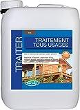 Sarpap T 5328 Traitement des Bois Insecticide Fongicide