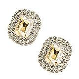 Tooky Kristallstein-Clips mit unechten Edelsteinen, abnehmbar, für Damen, zum Verzieren von Schuhen, Taschen, als Hochzeits- und Partydekoration, 2Stück Light Champagne