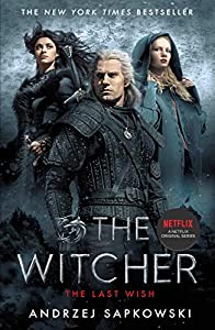 The Last Wish: Witcher 1: Introducing the Witcher (English Edition)