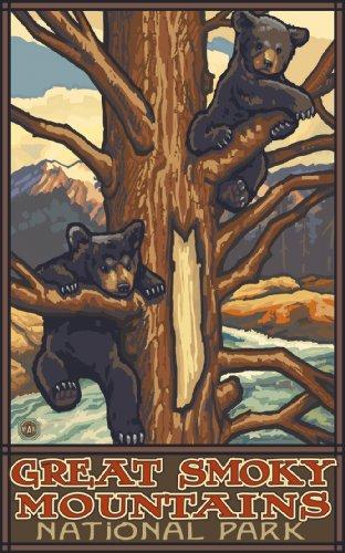 Northwest Art Mall Great Smoky Mountains National Park Two Bear Cubs North Carolina Wandschmuck von Paul A Lanquist, 28 x 43 cm