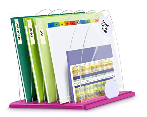 CEP 1008160371 - Organizzatore per documenti, lucido, 816 g, colore: rosa, trasparente