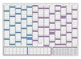 Schuljahreskalender 2018/19 (gerollt) - extra groß im DIN B1 Format (1000 x 700mm) - August 2018 bis August 2019 Wandkalender Jahresplaner für Schüler und Lehrer