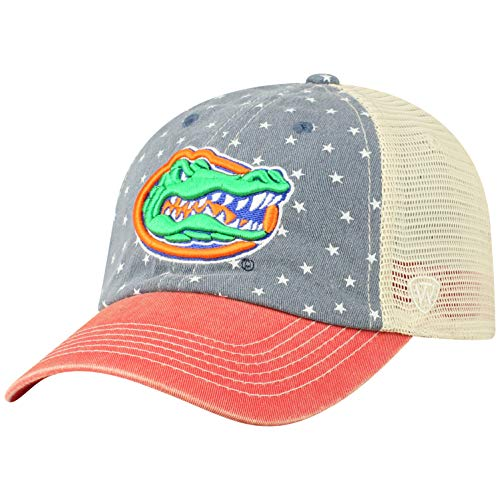 (Top of the World NCAA Florida Gators Men's Freedom Icon Adjustable Logo Hat, Navy)