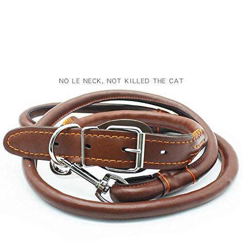Rindsleder Hundeleine Haustier Leder Kette Rindsleder Einzelne Reihe Kragen Kragen Hund Kette Kragen -